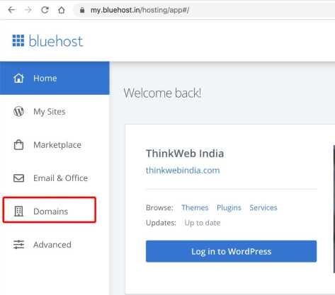 Login to Bluehost and click on Domains